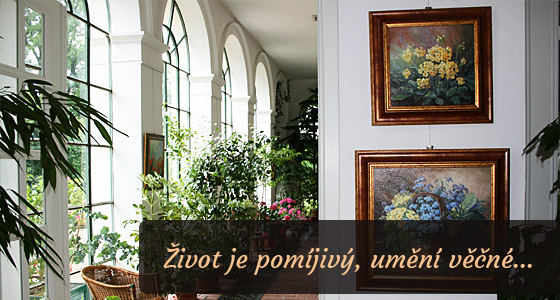 Obrazy - Dagmar Zemánková